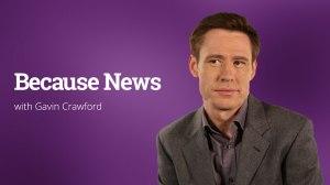 becausenews-header